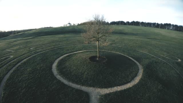 公園のツリー パスの迷路 - 迷路点の映像素材/bロール