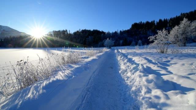 path on lake barmsee on morning with sun in winter, krün, garmisch-partenkirchen upper bavaria, bavaria, germany, european alps - krün stock videos and b-roll footage