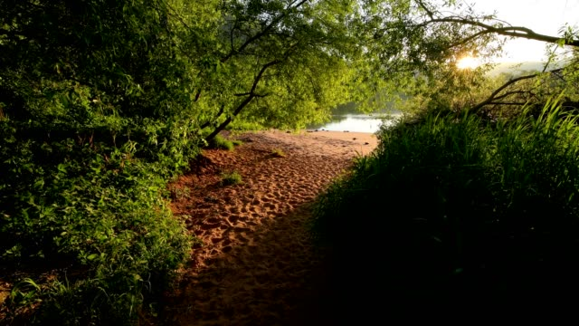 Path on riverside at sunrise on river main in spring,