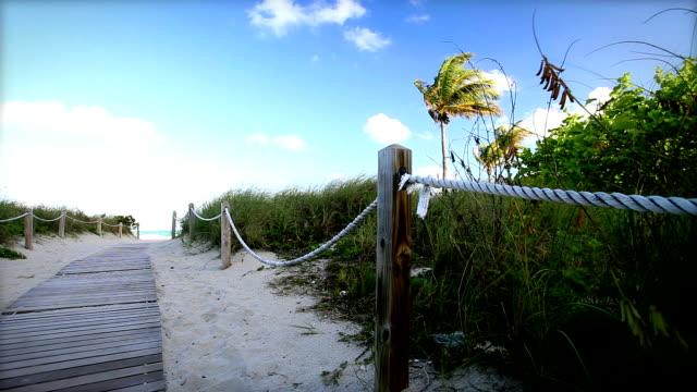 ビーチの小道 - オーシャンドライブ点の映像素材/bロール