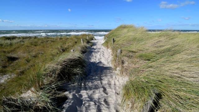 path through dune landscape, darsser ort, prerow, fischland-darß-zingst, baltic sea, mecklenburg-vorpommern, germany - ostsee stock-videos und b-roll-filmmaterial