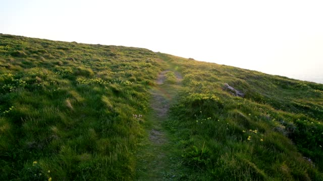 path through meadow in summer, trevose head lighthouse, padstow, cornwall, england, united kingdom, europe - cornwall england stock-videos und b-roll-filmmaterial