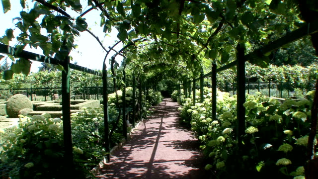 ms path through tuscan garden / gaiole in chianti, tuscany, italy - garden path stock videos and b-roll footage