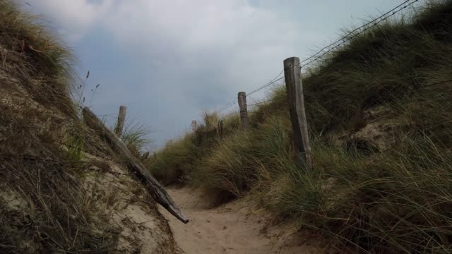 path to the beach on the island of sylt - übergang zum strand auf sylt - tina terras michael walter stock videos & royalty-free footage