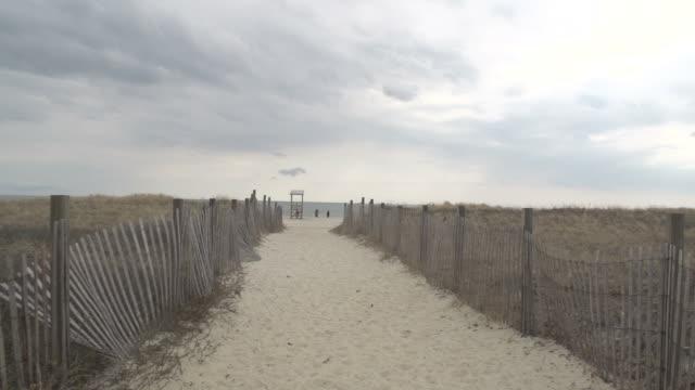 海へのパス - 捕らえられた動物点の映像素材/bロール