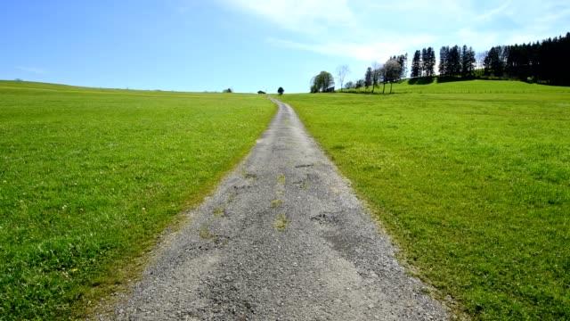Pathway through meadow in spring, Allgau, Bavaria, Germany