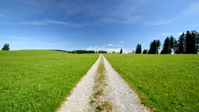 pathway through meadow in spring, allgau, bavaria, germany - einspurige straße stock-videos und b-roll-filmmaterial