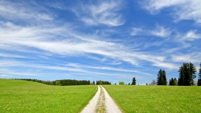 Pathway through meadow with white blue sky in spring, Allgau, Bavaria, Germany