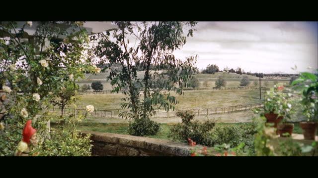 stockvideo's en b-roll-footage met ms patio and garden across vacant field / ner york,united states - breedbeeldformaat