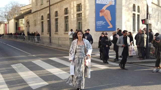 Patricia Manfield wears a Dior pleated dress with printed trees and animals outside Dior during Paris Fashion Week Haute Couture Spring Summer 2020...