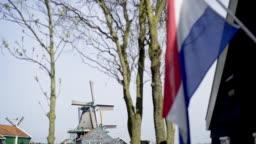 Patriotic holland concept.