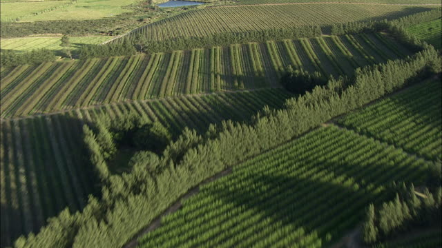 aerial patterned fields, paarl valley, franschhoek, western cape, south africa - franschhoek stock videos and b-roll footage