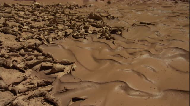 Patterns formed by drying mud, following a flash flood. Available in HD.