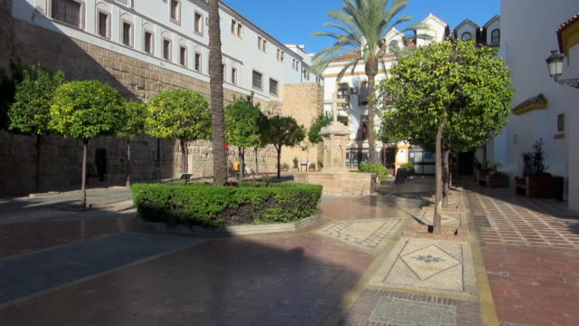 Paved Square with Trees in Malaga, Spain