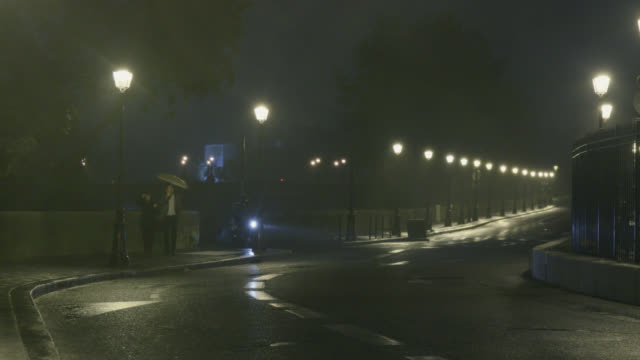 paved street of paris with lampposts in the rain - île de france stock-videos und b-roll-filmmaterial