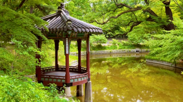 pavilion and pond in the huwon (secret garden) - pagoda stock videos and b-roll footage