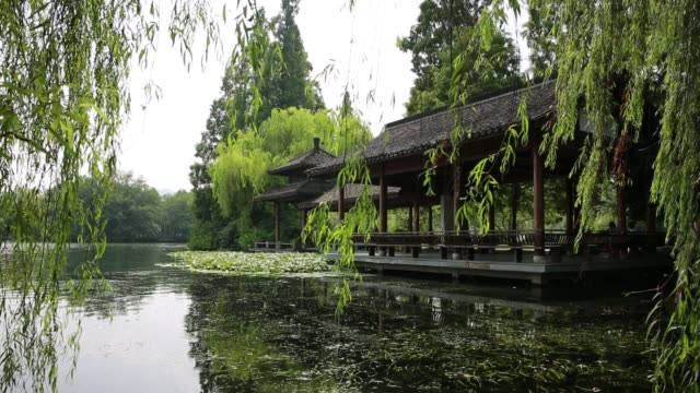pavilion on the west lake with willow trees blowing on wind,hangzhou,china - trauerweide stock-videos und b-roll-filmmaterial