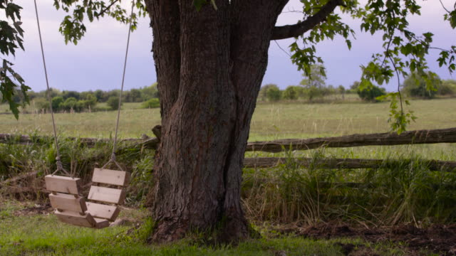 vidéos et rushes de calme et la tranquillité dans le pays - clôture jardin