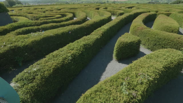 peace maze in the castlewellan forest park,northern ireland - maze stock videos & royalty-free footage
