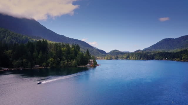peaceful lake on the olympic peninsula - lake stock videos & royalty-free footage