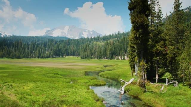 vídeos de stock, filmes e b-roll de meadow pacífica no lassen volcanic national park - riacho