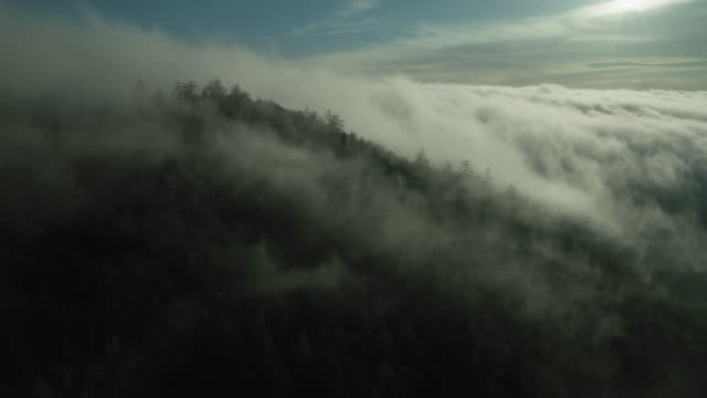 peaceful mountain landscape with fog - traumartig stock-videos und b-roll-filmmaterial