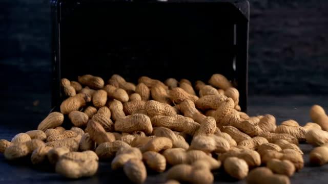ピーナッツは木製の背景にそれを注がれ - ナッツの殻点の映像素材/bロール