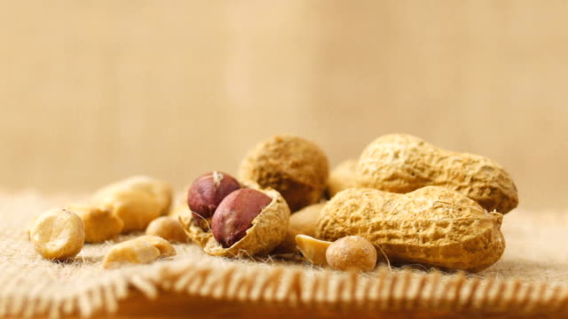 vídeos y material grabado en eventos de stock de gira de maní en el plato - peanut food