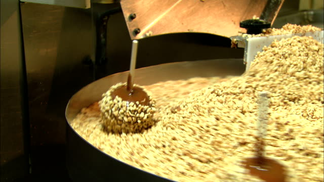 peanut-covered apples drop into a vat of the chopped nuts. - karamell stock-videos und b-roll-filmmaterial