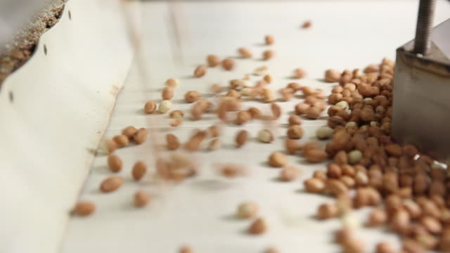 peanuts and packaging of the finished product beer nuts at the beer nuts inc factory on wednesday april 25 2018 - nut food stock videos & royalty-free footage
