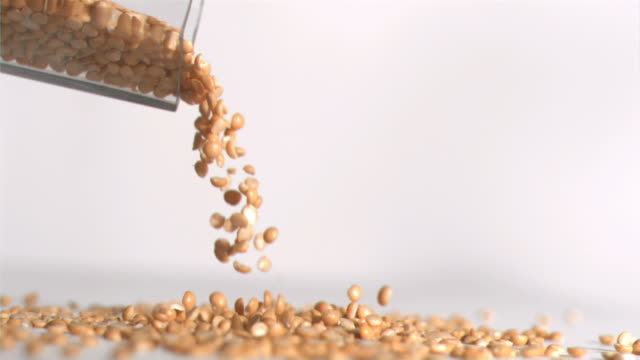 peanuts falling down in super slow motion - peanut food stock videos & royalty-free footage
