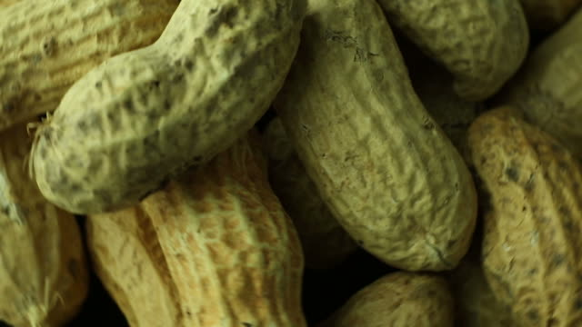 peanuts in shell close up macro - nutshell stock videos & royalty-free footage