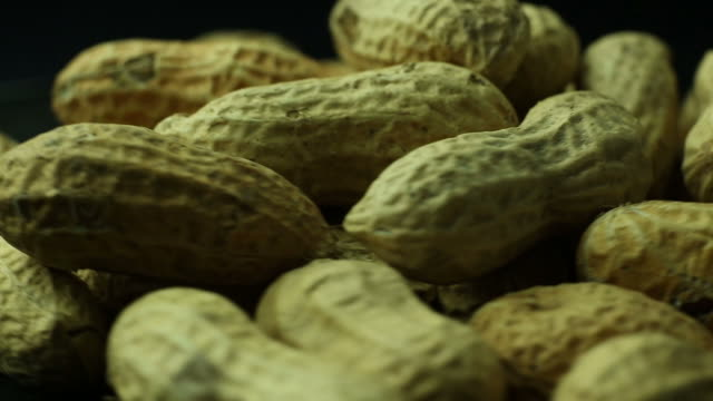 peanuts in shell close up macro - nutshell stock videos and b-roll footage