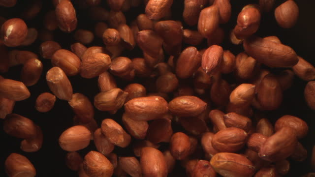 stockvideo's en b-roll-footage met peanuts nuts flying in the air in a free fall in slow motion on black background at 1500 fps - pinda voedsel