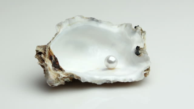 pearl in a rotating oyster shell (4:2:2@100 mb/s) - textfreiraum stock videos & royalty-free footage