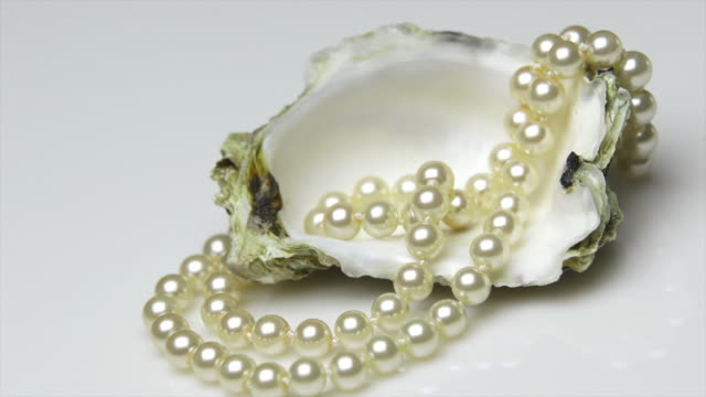 HD Pearl Necklace in an Oyster Shell Tracking Shot 4:2:2