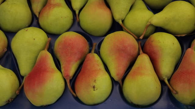 cu ld pears for sale in market / venice, italy - pear stock videos & royalty-free footage
