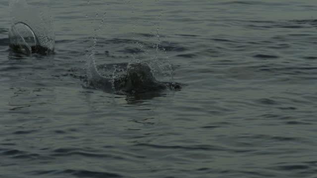stockvideo's en b-roll-footage met slo mo pebble skimming across gentle sea, spain - huppelen