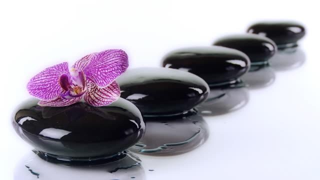 vídeos de stock, filmes e b-roll de hd dolly: pedras de seixos, coberta com óleo de massagem - lastone therapy