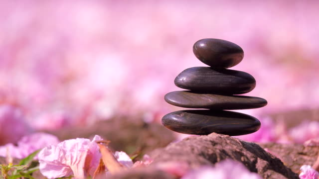 pebble stones over pink flowers - stack rock stock videos and b-roll footage
