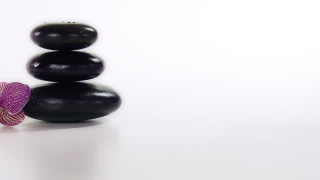 vídeos de stock, filmes e b-roll de hd dolly: pedras de seixos com colorido orchid - lastone therapy