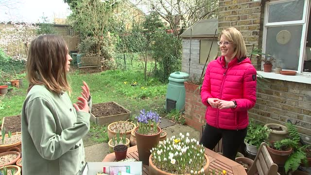 """peckham gardener sets up """"seed swap""""; england: london: peckham: ext close shots packets of seeds emma real-davies interview sot close shots packets... - peckham stock videos & royalty-free footage"""