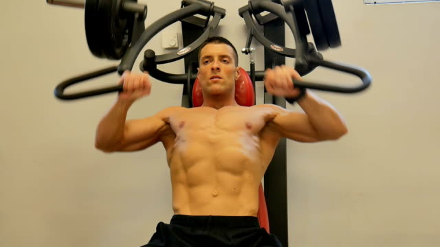 Pectoral muscles