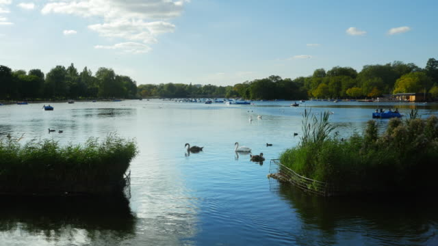 pedalo riders on the serpentine in london hyde park (uhd) - the serpentine london stock videos & royalty-free footage