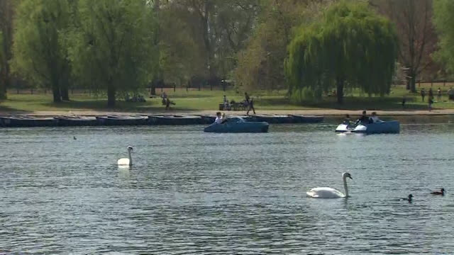 pedaloes on the serpentine lake in hyde park london during sunny weather - the serpentine london stock videos & royalty-free footage