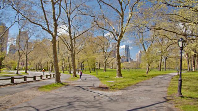 vídeos y material grabado en eventos de stock de peatón en empty central park new york. - central park