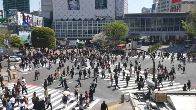 pedestrian cross shibuya crossing, crowd - shibuya crossing stock videos & royalty-free footage