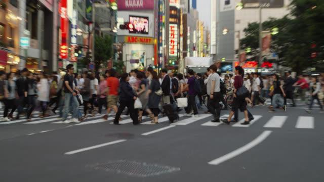 WS Pedestrian crossing at Shinjuku Dori / Tokyo, Tokyo-to, Japan