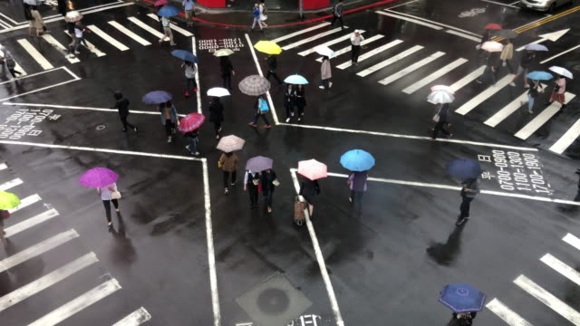 pedestrian crossing in the rain, people with umbrellas aerial view - zebra crossing stock videos & royalty-free footage