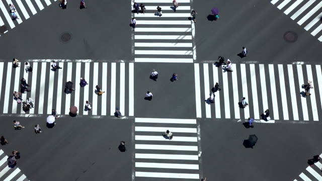 pedestrian crossing -4K-